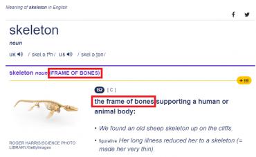 bones - bones-pCTBB